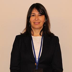 Viviana Del Carmen Castel Higuera