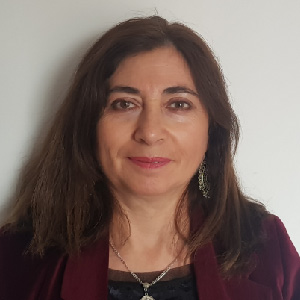 Vidian Gutiérrez Sepúlveda